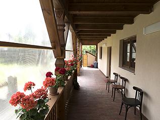 tourisme_roumanie_transylvanie_carpates_brasov_purcareni_arbre_de_joie_accueil_logement_séjour_gîte